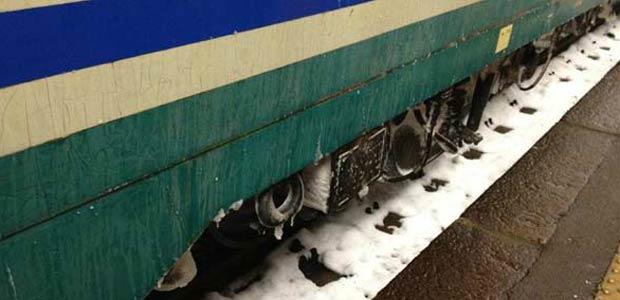 evidenza-treni