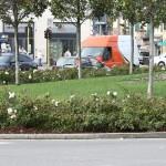 piazza-liberta