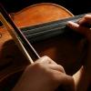 ViolinI-MP