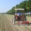 agricoltura-evid
