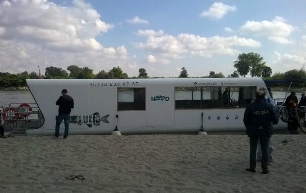 luccio-4
