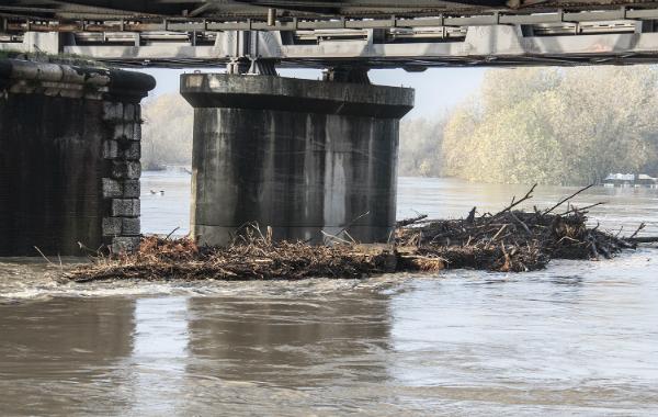 po-tronchi-ponte
