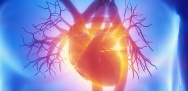 Rene e cuore Malattie in comune in un convegno - Cremonaoggi
