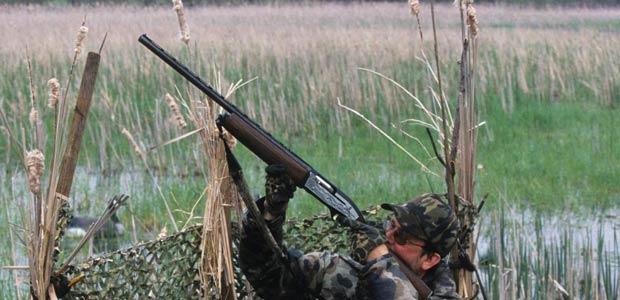caccia-evidenza-2