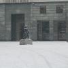 evidenza-neve