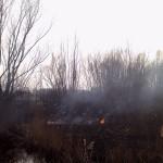 Incendio-3