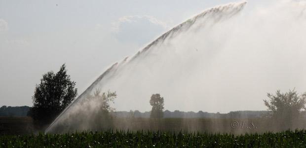 irrigare-campi