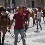 cavalli-gallery3