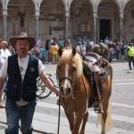cavalli-gallery4
