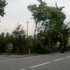 boscoviabergamo-evid
