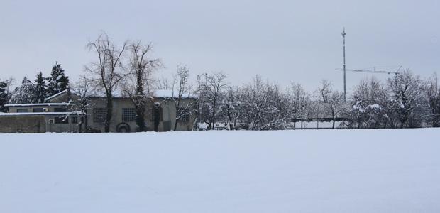 neve-campi-evid