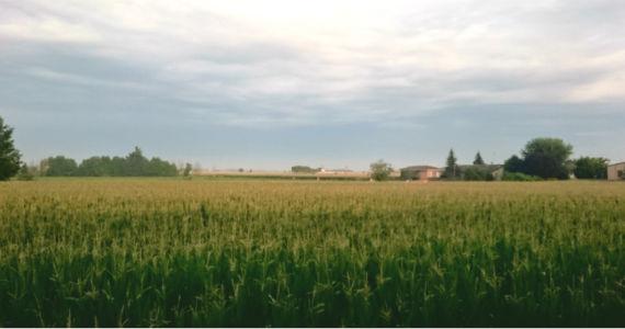 campi-cielo-evid