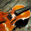 ricciolo-violino-ev