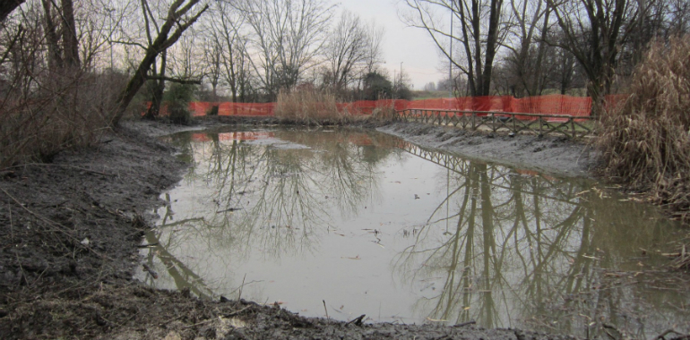 Laghetto della ciclabile del parco al po continuano i for Pulizia fondo laghetto