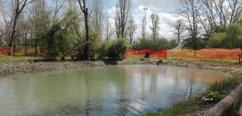 Tornata l 39 acqua nel laghetto del parco al po ora si for La casa nel laghetto