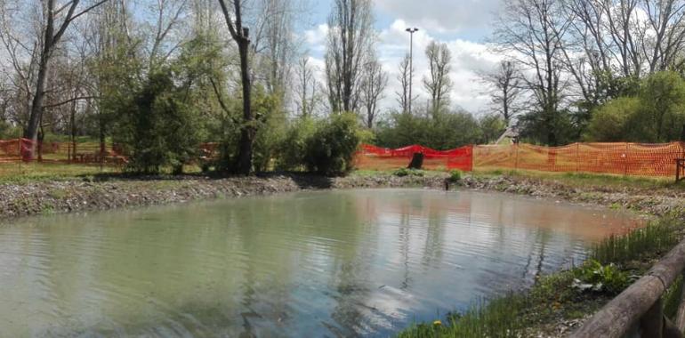 Tornata l 39 acqua nel laghetto del parco al po ora si for Acqua verde laghetto